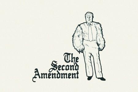 Second Ammendment