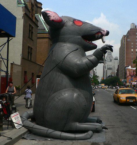 A Visit from the Giant Rat