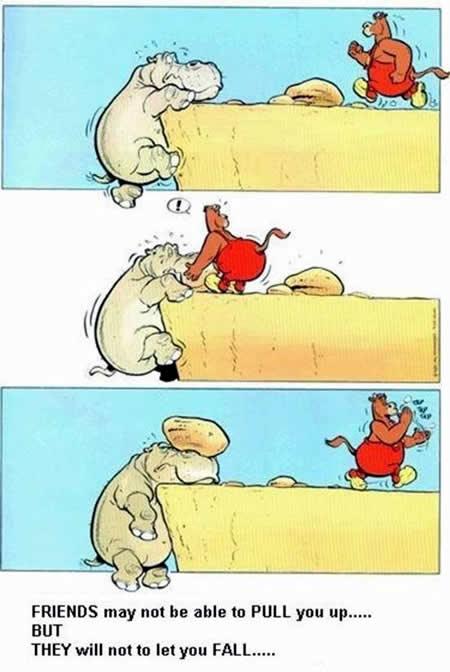 hippofriends