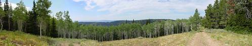 Ridge Panorama 1