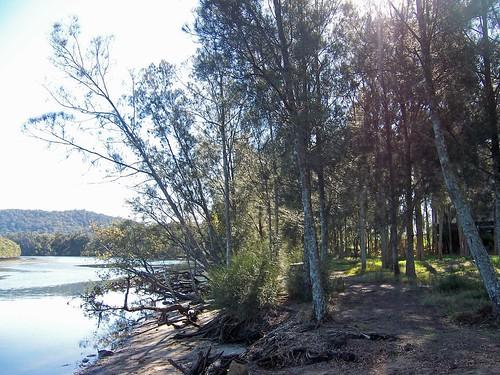 Narara Creek West Gosford