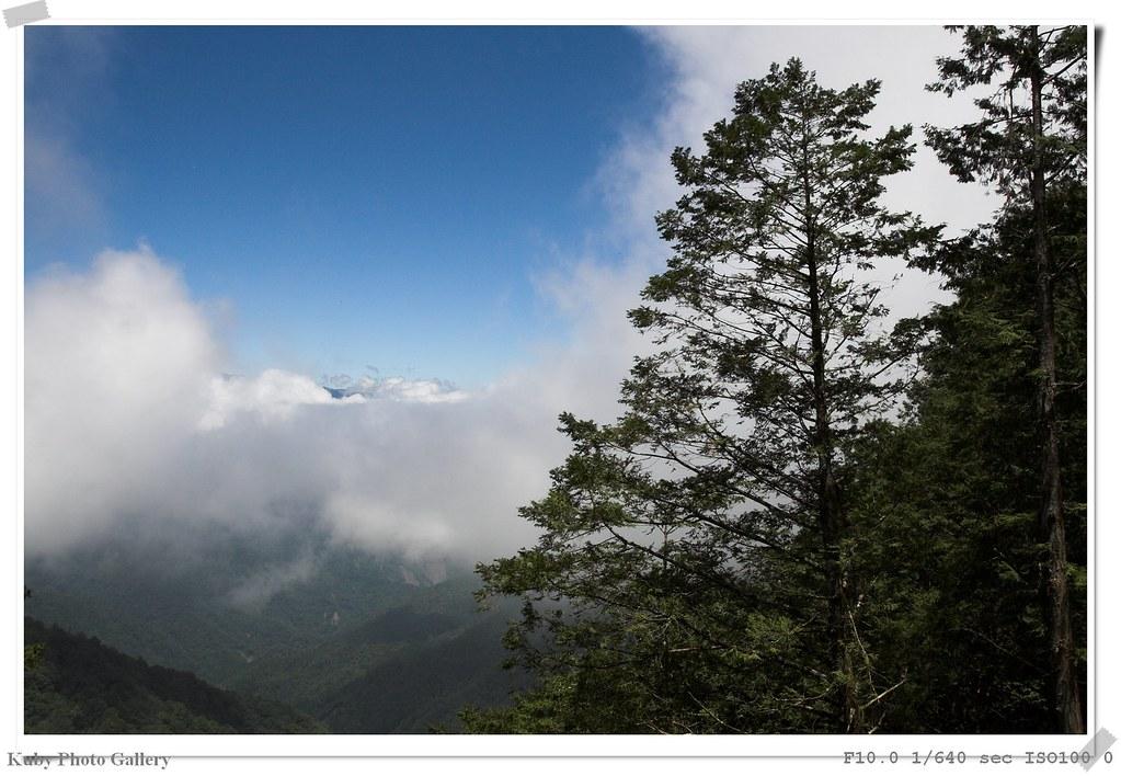 太平山之旅之三