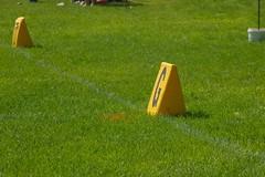 football018