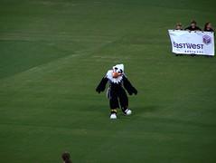 DC United Mascot