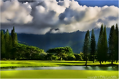 Golfing in Paradise photo by philipleemiller