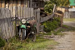 Motor Fence photo by Matilda Diamant