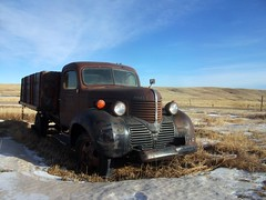 1939 Dodge truck photo by dave_7