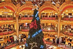 Paris, France - Xmas Tree @Galeries Lafayette photo by GlobeTrotter 2000