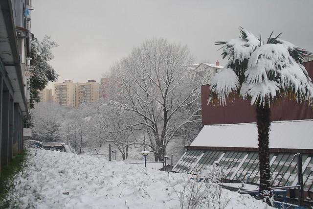 Foto de nieve en errenteria eitb fotos de usuarios - Tiempo en errenteria ...