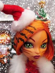 *Meowy Christmas!* photo by Mariko&Susie