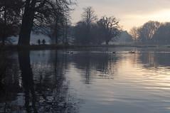 Sunrise at Pen Ponds photo by Ida H