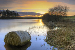 Whiteloch Loch photo by cal 311