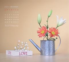 December Calendar photo by Faisal | Photography