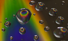 364 of 365 - Rainbow Drops (Explored) photo by linlaw39