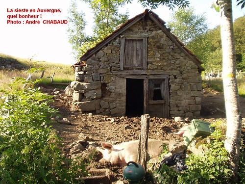 La sieste en Auvergne, quel bonheur !