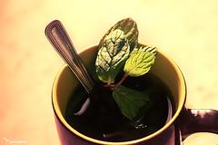 Tea Time photo by Tarqe alzharani || ******