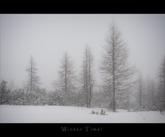 Winter time photo by -Fabrizio-