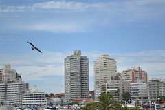 """Verano en Punta del Este"" photo by Leandro Martínez »"