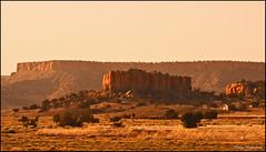 New Mexico photo by mokastet