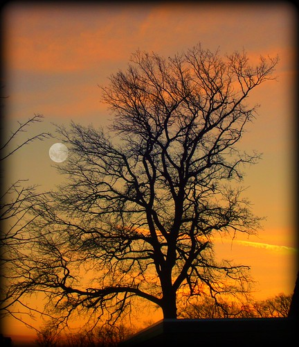todays sunset photo by sillitilly
