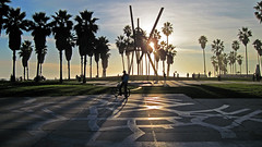 Main Photo for Around The Block: An Afternoon on Venice Beach, CA