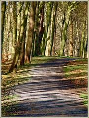 Pathway to 2012 ? photo by Geoff http://www.ipernity.com/mcelwaine.geoffrey