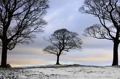 Lyme Park photo by Serigrapher