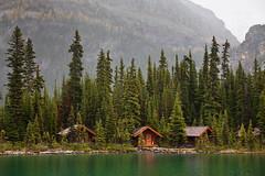 Rustic Cabins of Lake O'Hara Lodge photo by Lee Rentz