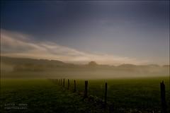 Misty night photo by Lucas Janin | www.lucas3d.com