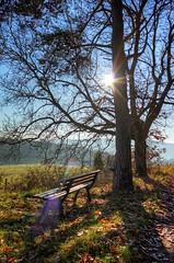 Empty bench [explored] photo by Sebastian.Schneider