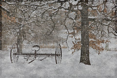 Textured Texas Snow photo by BeachBumBlu