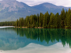 Jasper  Canada photo by Diana Tonner Photos