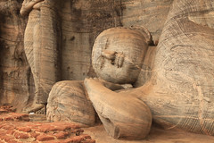 Reclining Buddha Lotus Flower Offering Gal Vihara Polonnaruwa Sri Lanka photo by eriagn