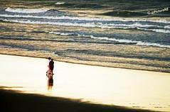 On Golden Sands photo by Steve Taylor (Photography)