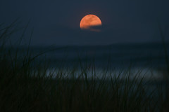 2012April06 Full Moon Rising photo by TaviGreiner2011