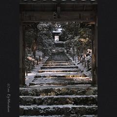 常照皇寺 参道 photo by Eiji Murakami