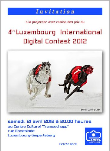4-th Luxembourg International Digital Contest Public Showing and Awards Ceremony