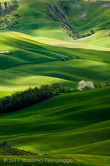 Primavera in  Toscana photo by Massimo Pelagagge