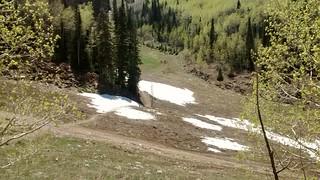 Still a little snow on mid-mountain