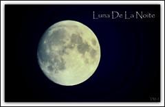 Luna De La Noite photo by tonymarq Super Busy.