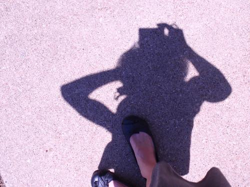 In Bright Sunlight