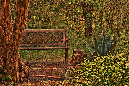 Happy Bench Monday 06.11.12 photo by Jims_photos
