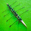 Rowing in Green