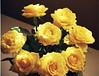 7346144606_6ceae97a69_t