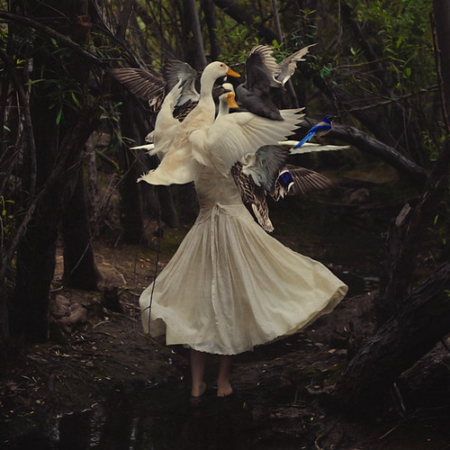 the creation of mother goose photo by brookeshaden