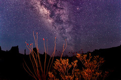 Milky Way in the Big Bend [Explored 5/16/2012] photo by dfikar