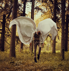 Fragile Wings photo by Kyle.Thompson