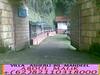 7098062103_fba1fa4254_t