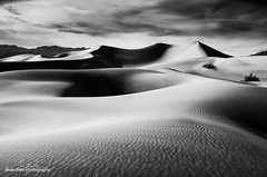 Mesquite Dunes, Black and White photo by moe chen