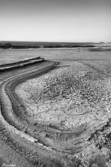 dryness B/W photo by Mansour Al-Fayez